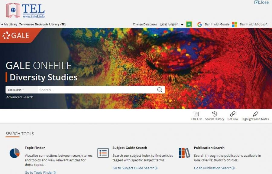 Gale OneFile: Diversity Studies homepage
